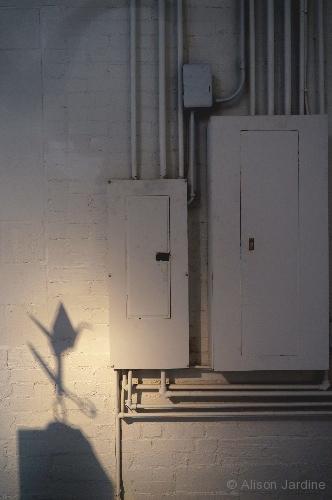 41-jardine-chg-shadow