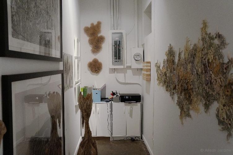 35-jardine-urbane-backroom