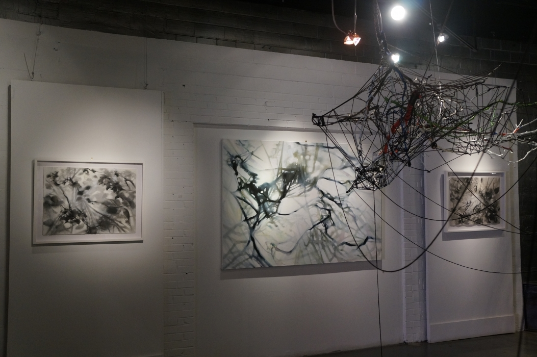 drawings, painting and shadow installation from found branches, twine